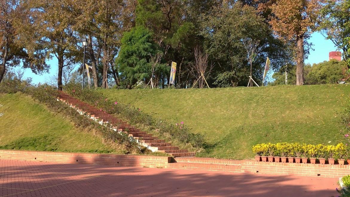 校園花木-紅磚集合場旁斜坡杜鵑補植及隔草板安裝
