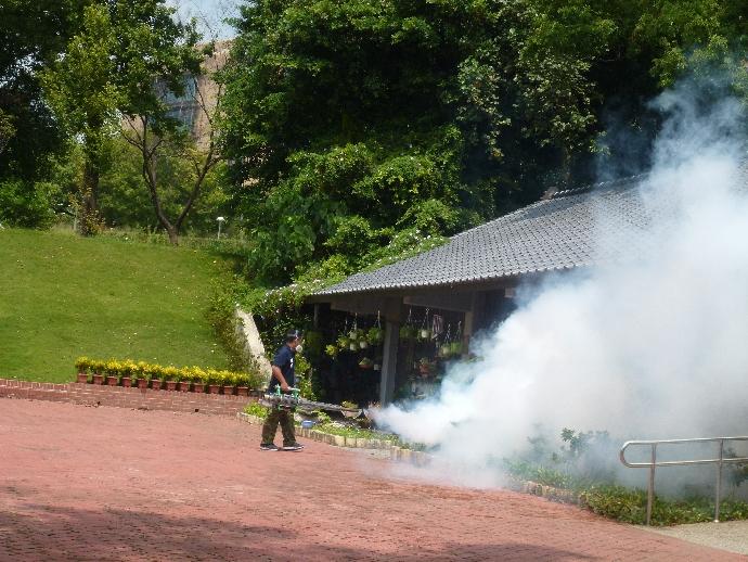 實施「預防登革熱病媒蚊加強消毒工作」