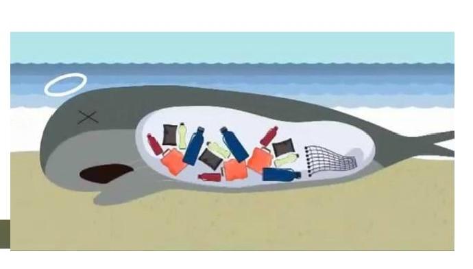 107學年東大附中「減塑行動,拯救海洋」校慶園遊會攤位申請表